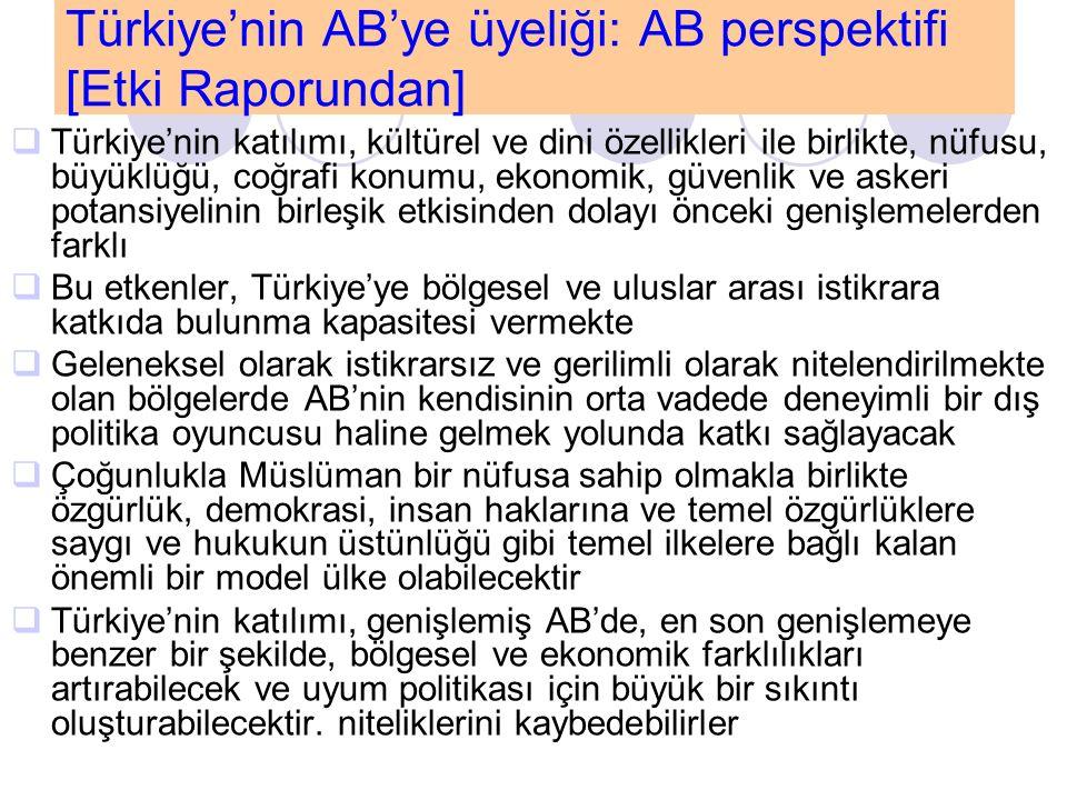 Türkiye'nin AB'ye üyeliği: AB perspektifi [Etki Raporundan]